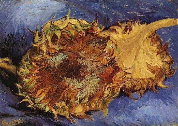 Vincent van Gogh: Two Cut Sunflowers. Oil on canvas. Paris, August- September, 1887. New York: Metropolitan Museum of Art.