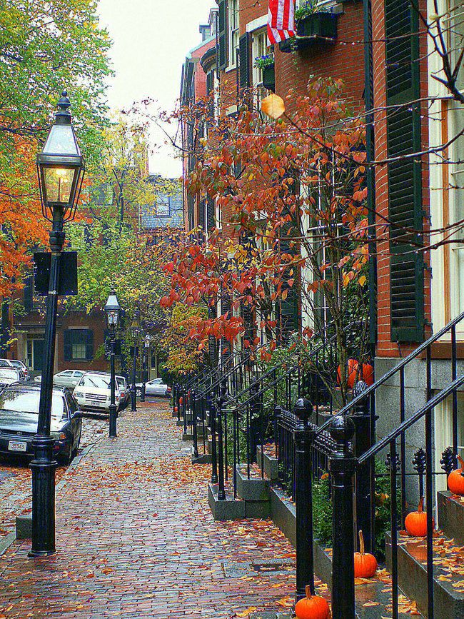 Stroll through the beautiful streets in Beacon Hill filled with lovely turn of the century red brick buildings.