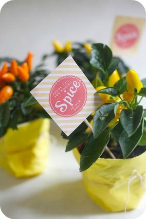 These would work with your colors and could double as centerpiece.  Summer Wedding Favor - Hot Pepper Plant - OhHappyDay.com