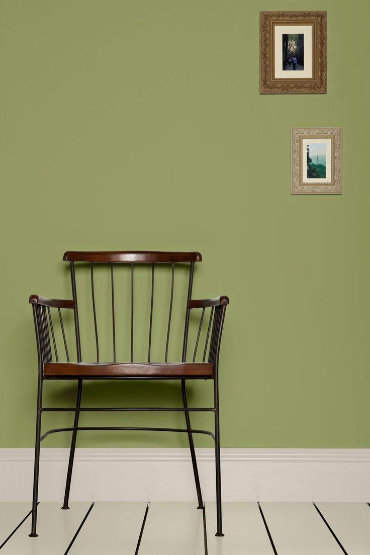 Best 25 Olive green paints ideas on Pinterest  Olive