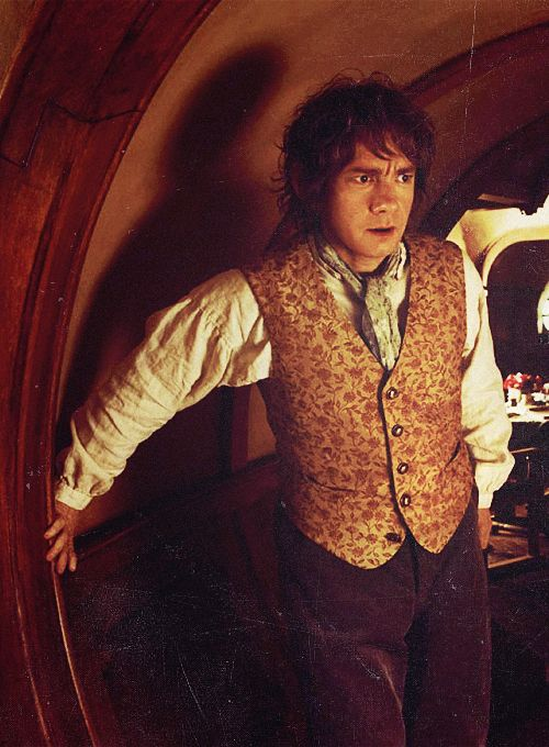 I would like to take this time to point out that Bilbo has very good taste when it comes to clothing :)