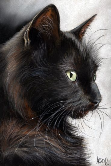 Pastel drawing by German artist Angela-Carmen Griehl-Groß More and like OMG! get some yourself some pawtastic adorable cat apparel!