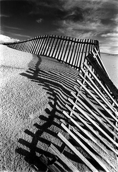Still Standing Gorgeous use of lines and shadows is what makes this a visually…