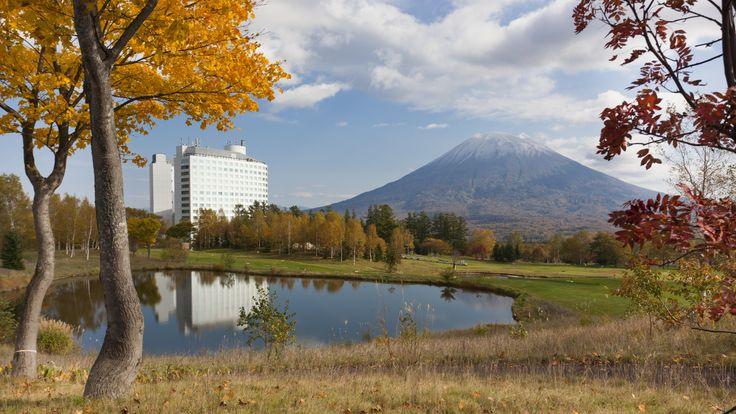 The autumn view of Hilton Niseko Village  ヒルトンニセコビレッジ秋の様子