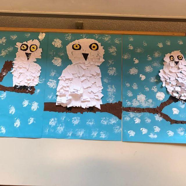Was wäre eine Eulenklasse ohne Schneeeulen-Zeichnung #grundschule #schule #eule… – #tierekita