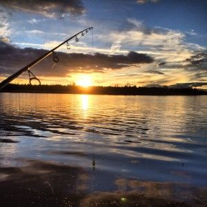 256 best images about celebrate arizona water on pinterest for Fishing lakes in arizona