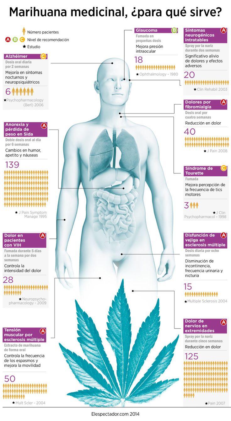 Marihuana medicina, ¿para qué sirve? - Investigación y Desarrollo