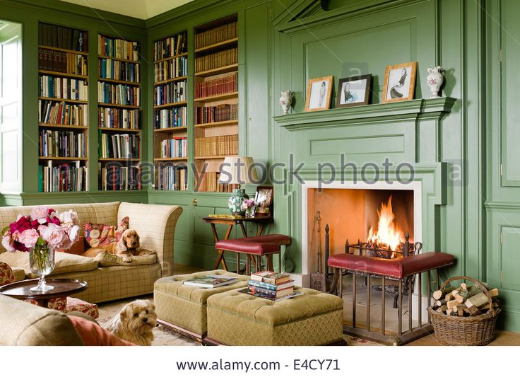 fireplace-with-fender-in-cosy-library-painted-in-calke-green-by-farrow-E4CY71.jpg (1300×955)