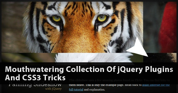 preview large mouthwateringcollectionjquerycss3 plugins wordpress js ajax html css css photo