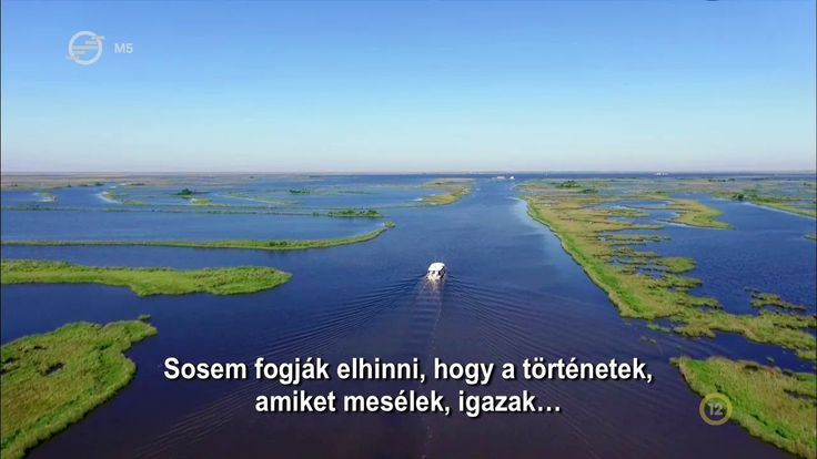 Mutasd meg, hol élsz! 19. - Louisiana - A bayouk elveszett paradicsoma