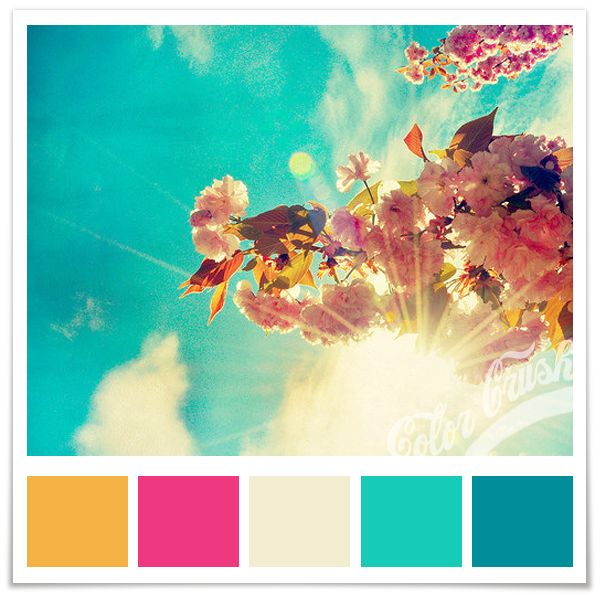 Very vibrant!