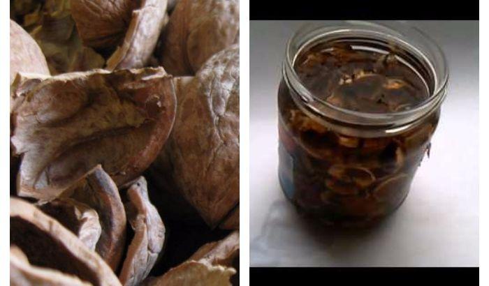 Настойка из ореховой скорлупы.Отличное средство, которое ни разу не подвело! Мощный рецепт — Мир Растений