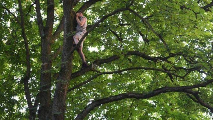 De man wilde een kat redden die al dagen in de boom zat, maar hij durfde zelf niet meer naar beneden.