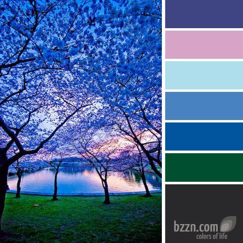 68 Best Images About Colour Palettes Bzzn On Pinterest