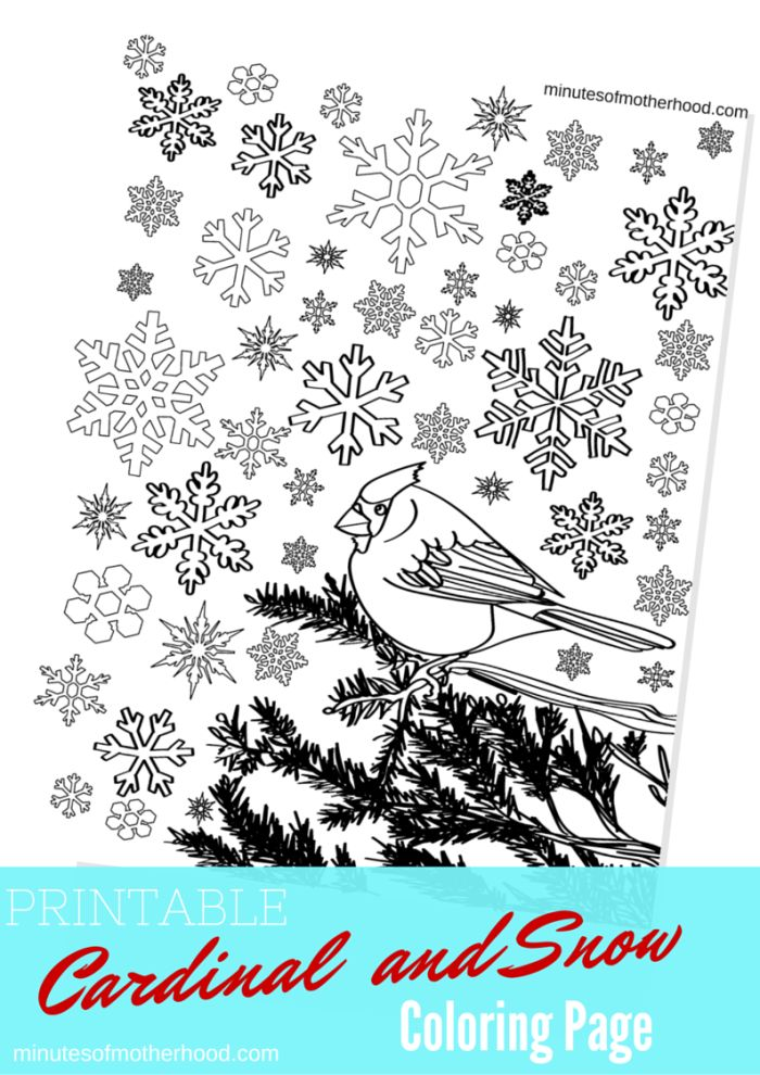 printable p coloring pages - photo#34