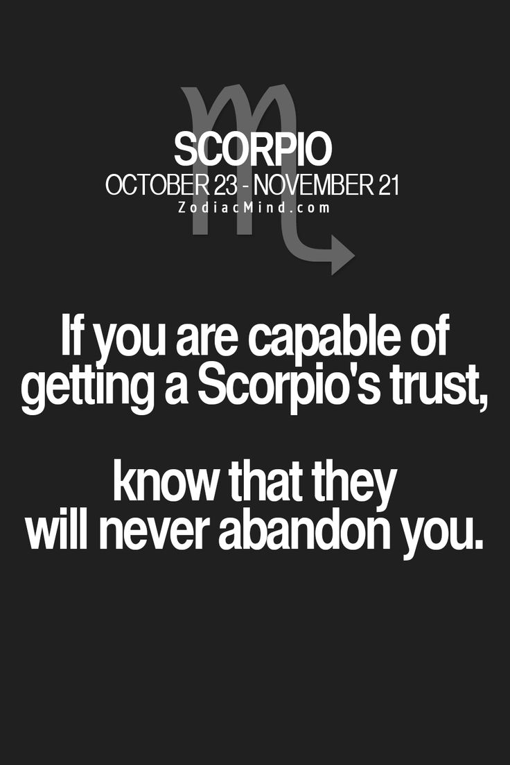 If you are capable of getting a scorpio's trust, know that they will never abandon you
