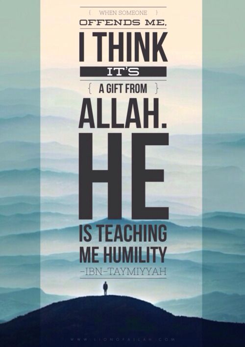 A Beautiful quote for Ibn Taymiyyah