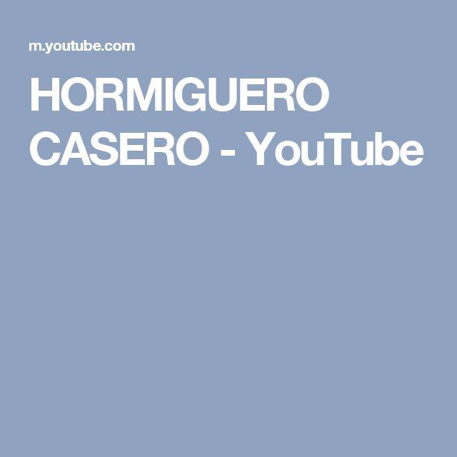 HORMIGUERO CASERO - YouTube