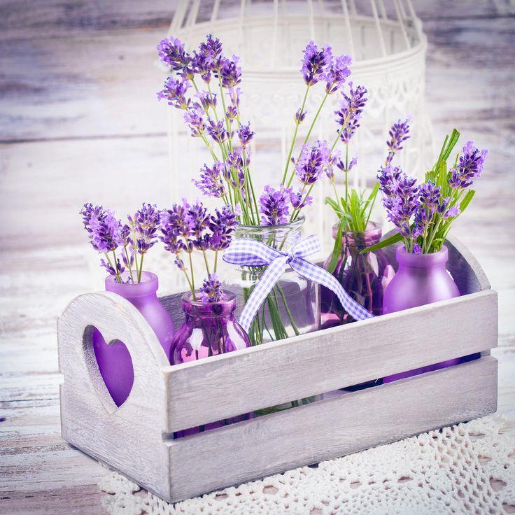 Die besten 25+ Lavendel schlafzimmer Ideen auf Pinterest Lila - wohnzimmer deko lila