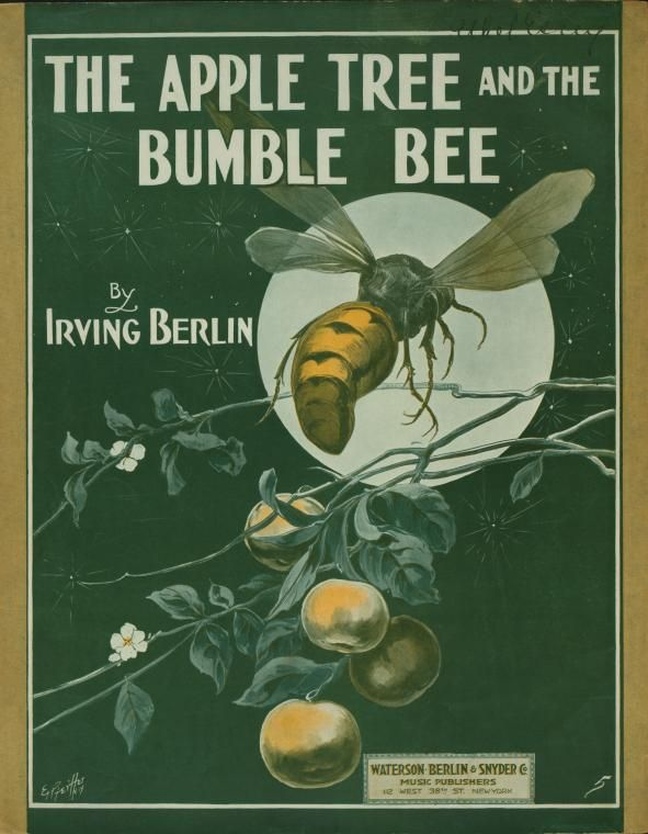 The apple tree and the bumble bee / [words and music by] Irving Berlin. (1913)