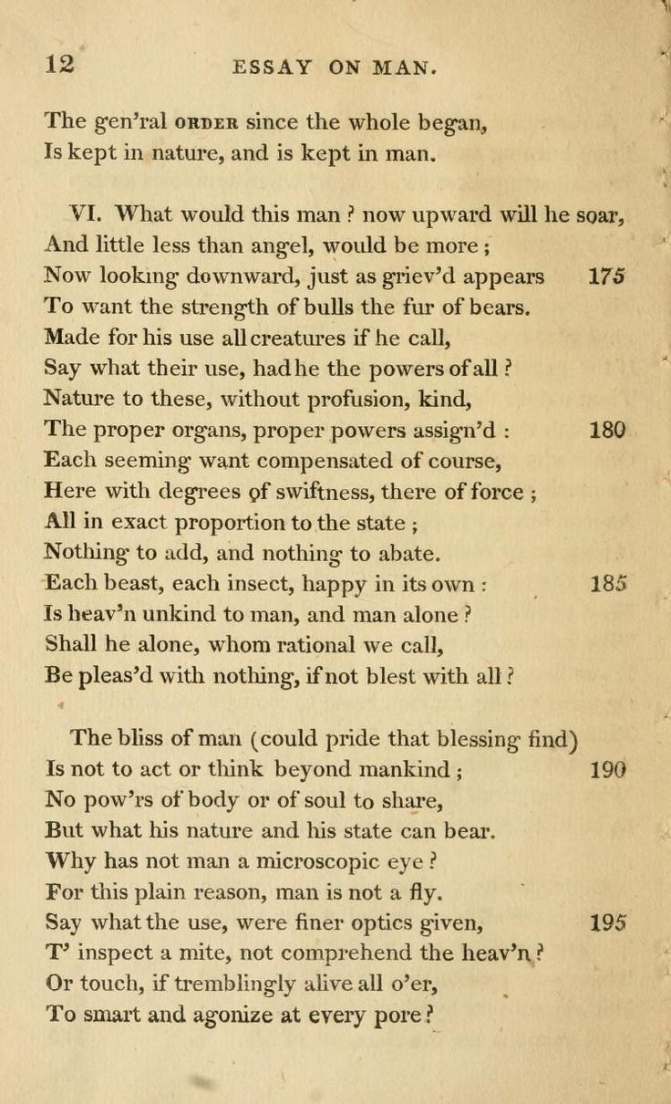 An essay on man poem by alexander pope