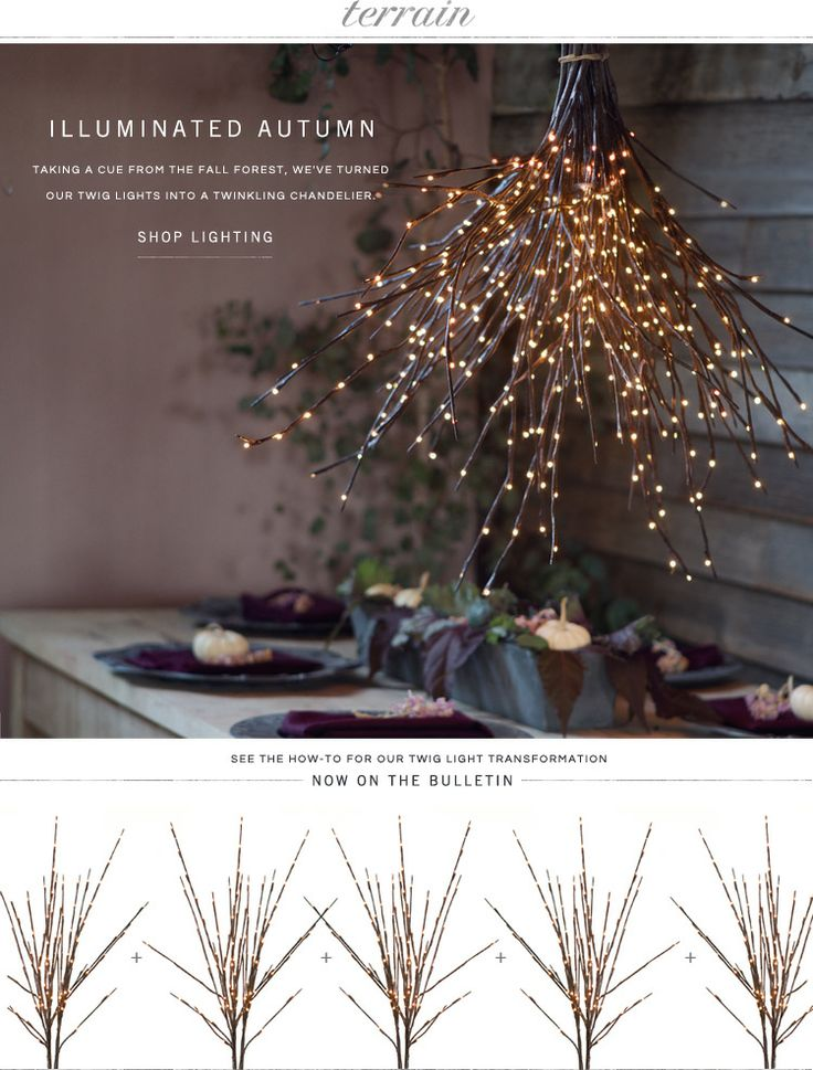 Illuminated Autumn: Taking a cue from the forest, we've turned our twig lights into a twinkling chandelier at Terrain.