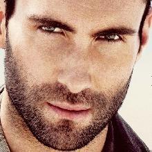 adam levineHotties, But, Sexy, Adam Levine, Boys, Adamlevine, Eye Candies, Maroon 5, People