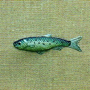 I would love to learn to embroider this little fish