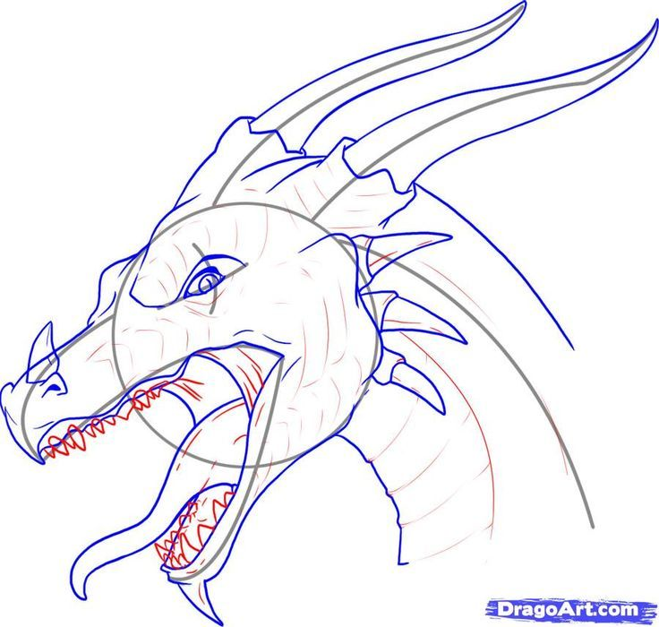 how to draw a realistic dragon head