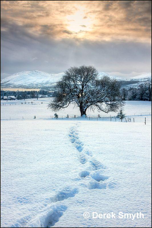 Lonely Footprints, Warrenpoint, Down, Northern Ireland by Derek Symth