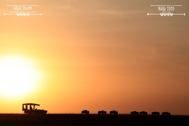 nothing wrong with a nice drive with the sun setting in the beautiful Kenyan Plains