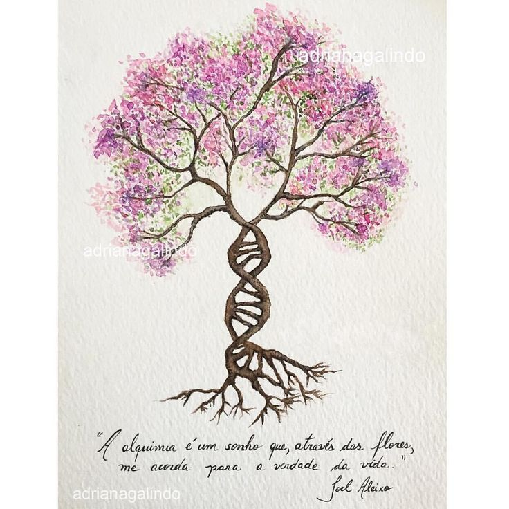 Life tree, tree 27, watercolor, 15 X 21 cm / Árvore da vida, n.28 aquarela, 40treesproject,  illustration, ilustracao, natureza, nature, yoga, namaste, adrianagalindo, árvore da vida, lifetree / drigalindo1@gmail...