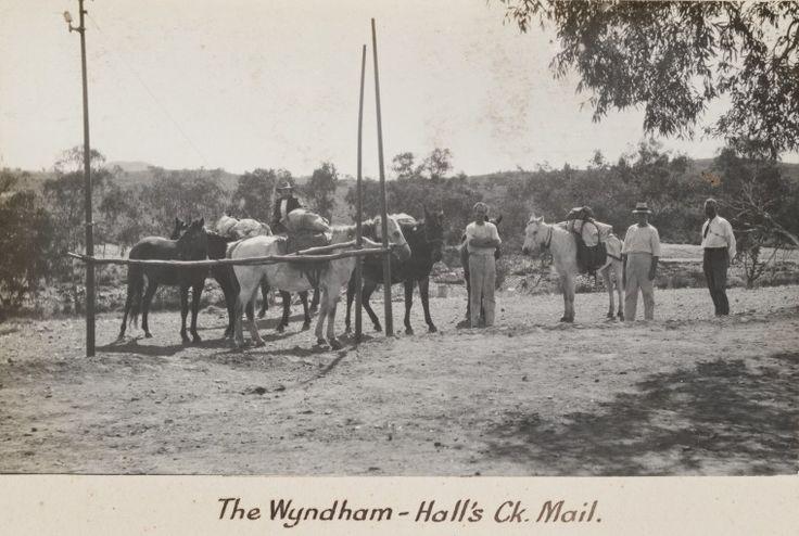 3231B/131: Wyndham - Halls Creek mail, 1916 http://encore.slwa.wa.gov.au/iii/encore/record/C__Rb4688710?lang=eng