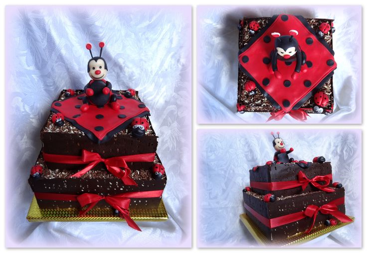 Ladybird chocolate cake
