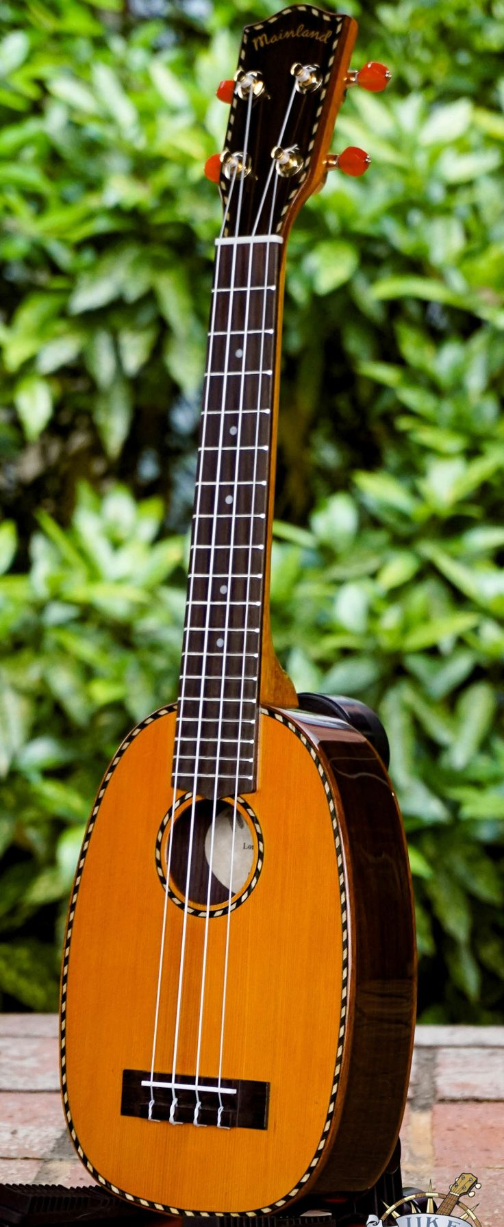 Mainland red cedar long neck Concert Pineapple Ukulele --- https://www.pinterest.com/lardyfatboy/