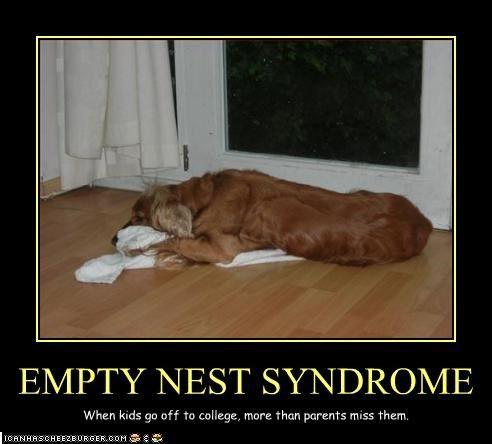 147 besten empty nest humor bilder auf pinterest l cheln lustiges und urkomisch. Black Bedroom Furniture Sets. Home Design Ideas