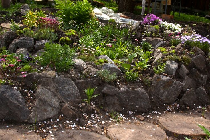 landscaping with rocks plants landscaping alpine hill hill pinterest gardens trees. Black Bedroom Furniture Sets. Home Design Ideas
