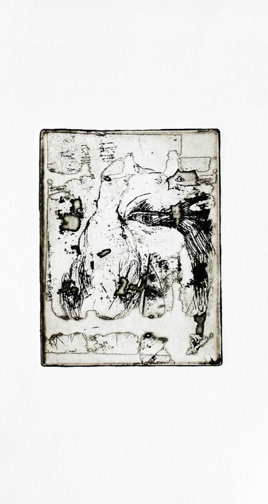 Etchings and gravures, Great Auk #1 by Louise Bech Pedersen #art #artist #painting #drawing - Beauton Art Gallery - http://beautonart.com | http://beautonart.dk