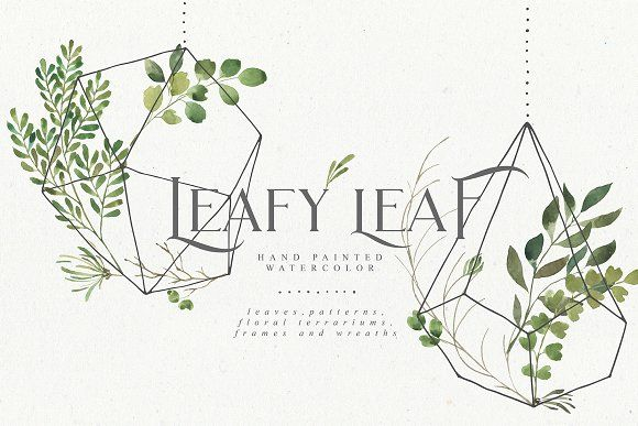 Leafy Leaf Collection by Julia Dreams on @creativemarket