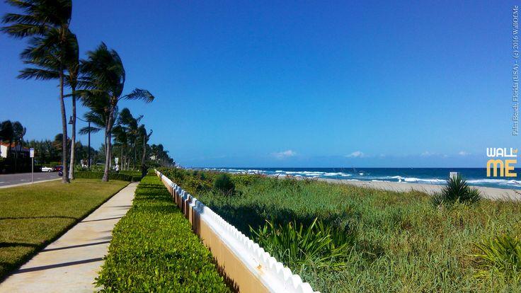 2016, week 38. Palm Beach - Florida (USA).  Picture taken: 2015, 10