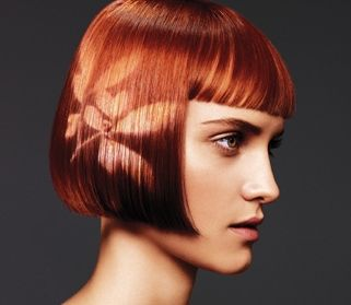 96 best Aveda Hair images on Pinterest   Hair dos, Aveda hair and Hair