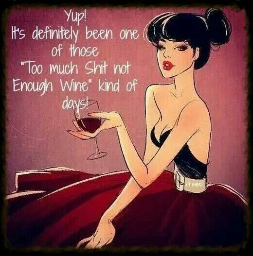 """It's definitely been one of those """"too much shit not enough wine"""" kind of days."""