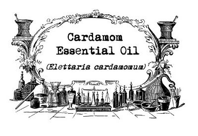how to make cardamom tea with ground cardamom