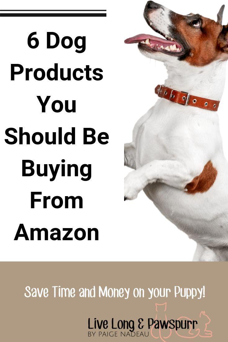 6 Dog Products You Need To Be Buying From Amazon Dog Training