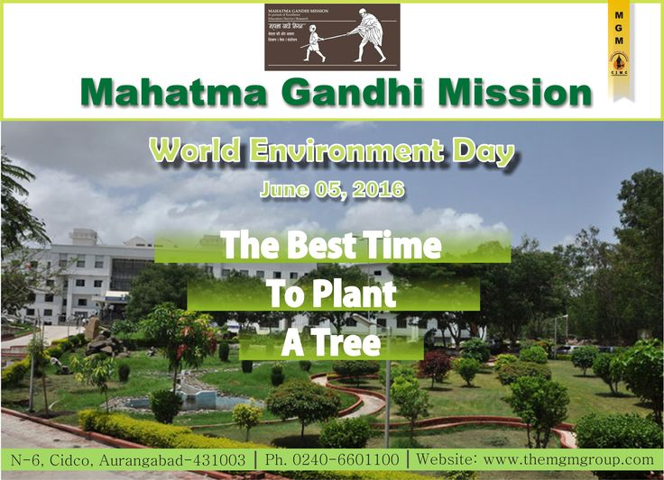 #World #Environment #Day #save #Trees