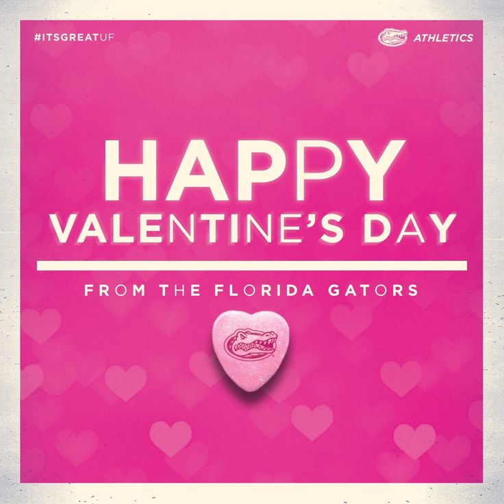 20 best Happy Valentine\'s Day! images on Pinterest | Alligators ...