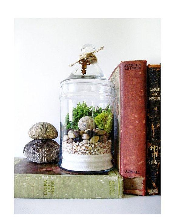 Live Plant Terrarium: Layered Beach Treasures Terrarium with Antique Skeleton Key