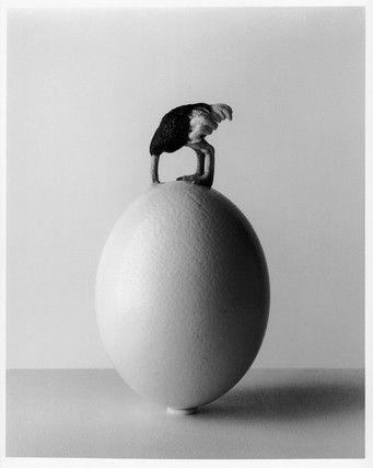 "Чема Мадоз. Выставка ""Фотоманипуляции"". #Photography #фотография. https://www.erarta.com/ru/calendar/exhibitions/detail/a9fa201f-088a-11e7-8d54-8920284aa333/"