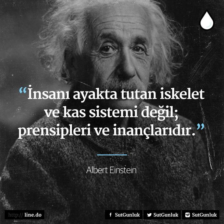 İnsanı ayakta tutan iskelet ve kas sistemi değil; prensipleri ve inançlarıdır.   - Albert Einstein  #sözler #anlamlısözler #güzelsözler #manalısözler #özlüsözler #alıntı #alıntılar #alıntıdır #alıntısözler