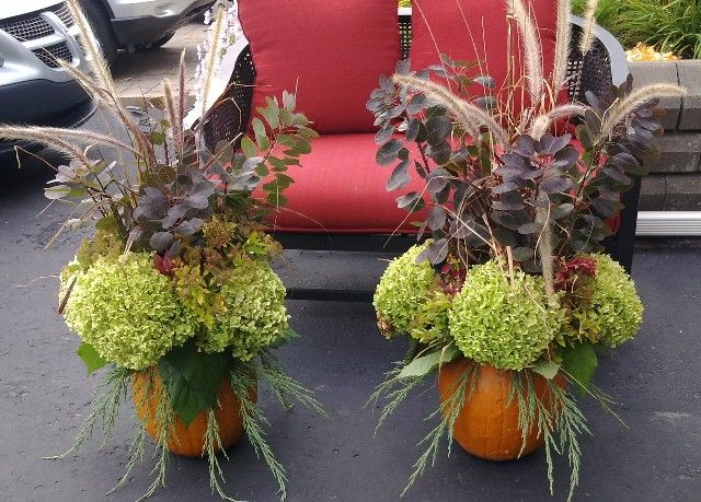 Cheap Fall Decorations | Thread: Recycle Your Garden - Cheap Fall Decorations